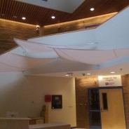 Cooperative Educational Services Gets Indoor Shade Sails!