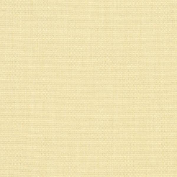 Parchment #4683